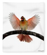 Cardinal Landing On Handle Fleece Blanket