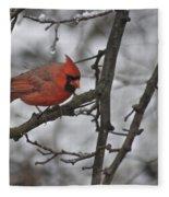 Cardinal Male 3666 Fleece Blanket