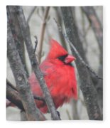 Cardinal With Fluffed Feathers Fleece Blanket