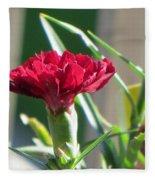 Carnation Named Hounsa Fleece Blanket