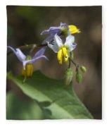 Carolina Horse Nettle - Bull Nettle - Devil's Tomato - Solanum Carolinense Fleece Blanket