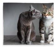 Cat Kiss Fleece Blanket