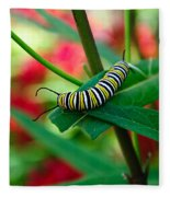 Caterpillar Before The Butterfly 1 Fleece Blanket