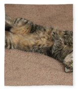 Catnip Fleece Blanket