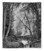Catskill Brook, 1873 Fleece Blanket