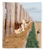 Cattle Feeding Fleece Blanket