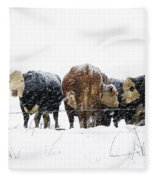 Cattle In A Snowstorm In Southwest Michigan Fleece Blanket