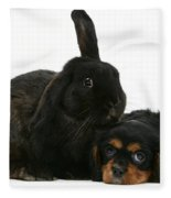 Cavalier King Charles Spaniel And Rabbit Fleece Blanket