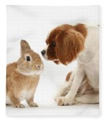Cavalier King Charles Spaniel Fleece Blanket