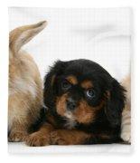 Cavalier King Charles Spaniel Pup Fleece Blanket