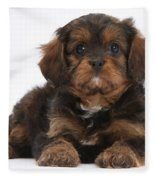 Cavapoo Pup Fleece Blanket