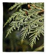 Cedar Due Droplets Fleece Blanket