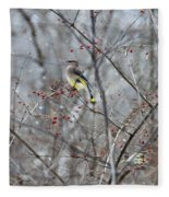 Cedar Wax Wing 3 Fleece Blanket