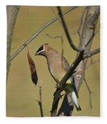 Cedar Waxwing - 2491 Fleece Blanket