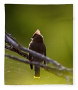 Cedar Waxwing Perched In Tree Fleece Blanket