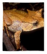 Central American Casque Headed Frog Fleece Blanket