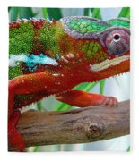 Chameleon Close Up Fleece Blanket