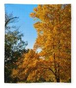 Changing Leaves Fleece Blanket