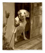Charleston Shop Dog In Sepia Fleece Blanket