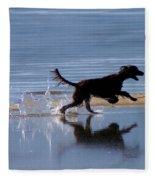 Chasing Reflections Fleece Blanket
