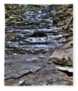 Chasing The Eternal Flame At Chestnut Ridge Park Fleece Blanket