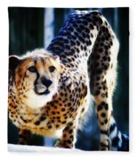 Cheeta Fleece Blanket