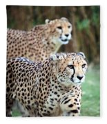 Cheetah Brothers Fleece Blanket