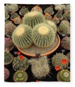 Chelsea Flower Show Cacti Display Fleece Blanket