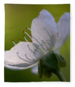 Cherry Flower Fleece Blanket