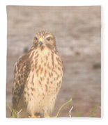 Chicken Hawk 1 Fleece Blanket
