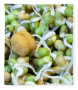 Chickpea And Other Lentils In The Form Of Healthy Eatable Sprouts Fleece Blanket