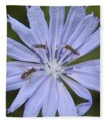 Chicory For Three Fleece Blanket