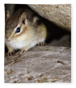 Chipmunk In Danger Fleece Blanket