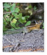 Chipmunk On A Log Fleece Blanket