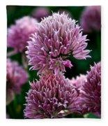 Chive Blossom Fleece Blanket