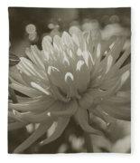 Chrysanthemum In Bloom Fleece Blanket