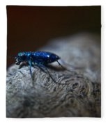 Cicindellidae A Family Of Preditors Fleece Blanket