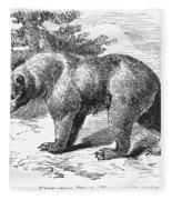 Cinnamon Bear Fleece Blanket