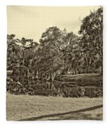 City Park Lagoon Sepia Fleece Blanket