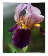 Classic Purple Two-tone Dutch Iris Fleece Blanket