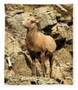 Cliff Hanger Fleece Blanket