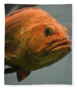Close And Fishy Fleece Blanket