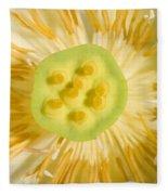 Close-up Of American Lotus Nelumbo Lutea Fleece Blanket
