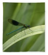 Close-up Of Dragonfly Perched On Leaf Fleece Blanket