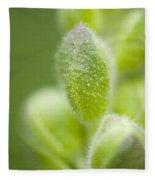 Close-up Of Flower Buds Fleece Blanket