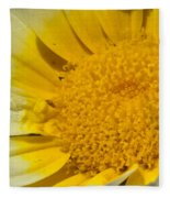 Close Up Of The Inside Of A Yellow And White Sun Flower Fleece Blanket