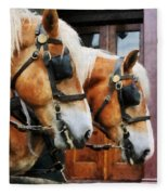 Clydesdale Closeup Fleece Blanket