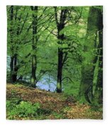 Co Kerry, Standing Stone On Clogher Fleece Blanket
