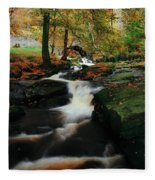 Co Wicklow, Ireland Waterfalll Near Fleece Blanket