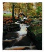 Co Wicklow, Ireland Waterfalll Near Fleece Blanket